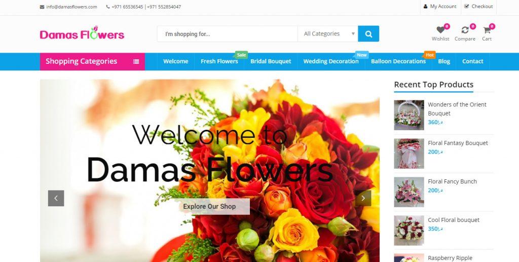 eCommerce Website Design Services USA